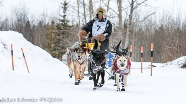 Quest rookie Gaetan Pierrard, the final 2016 Yukon Quest musher on the trail, arrived at Takhini Hot Springs at around 9 a.m. Friday.