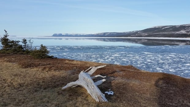 The shoreline of Newfoundland and Labrador's Port au Port Peninsula, the report's primary focus for a scenario of fracking activity.