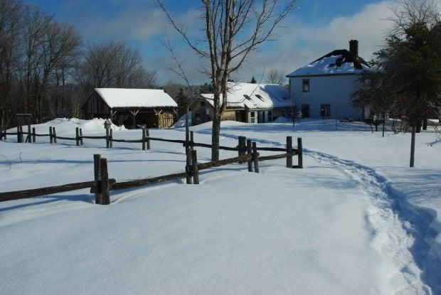 ho-holtville-farm