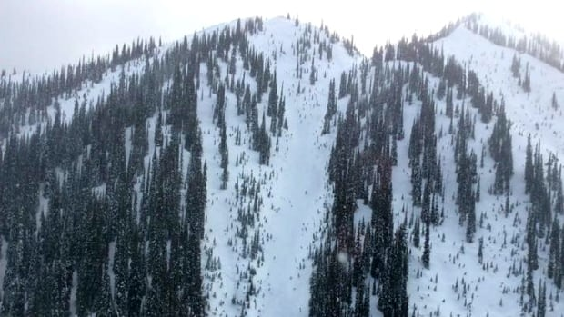 Golden and District Search and Rescue responded to an avalanche on the Esplanade Range on Sunday.