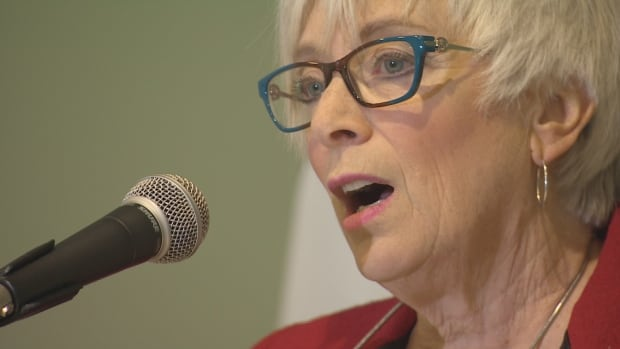 Social Development Minister Cathy Rogers announced the creation of the Council on Aging in 2015 after the government's plans to change its nursing home policy were rejected by seniors.