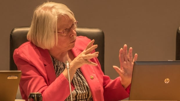 Kanata North councillor Marianne Wilkinson speaks during Wednesday's city council meeting. A plan to spend $1.5 million to kill mosquito larvae over the next four years in her ward was approved.