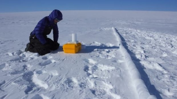 Ice core driller Ali Criscitiello examines a core sample.