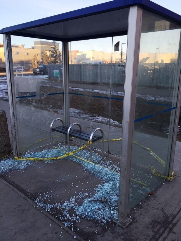 Bus Shelter Damaged 1