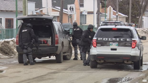 As many as 10 Winnipeg police units responded to reports of a gun call in Elmwood Saturday.