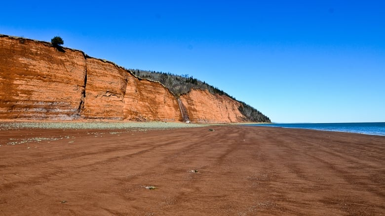 Record-breaking reservation rush for Nova Scotia parks