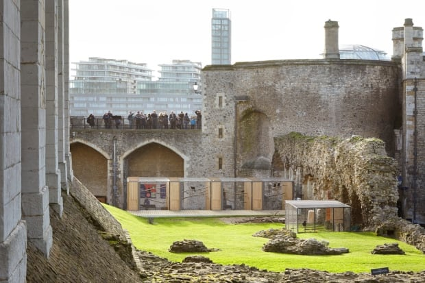 Tower of London - Raven habitat