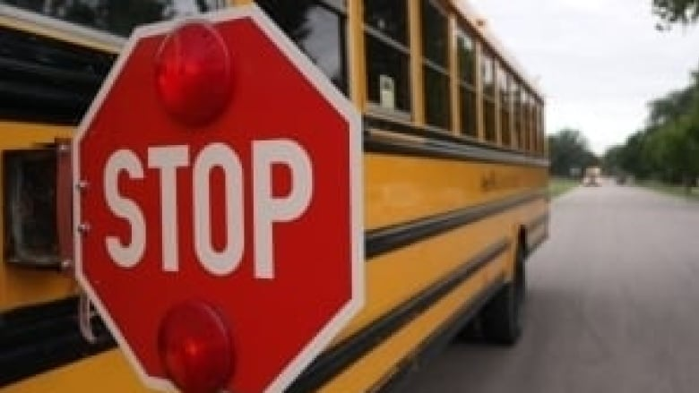 Another school bus sidelined by safety concerns | CBC News