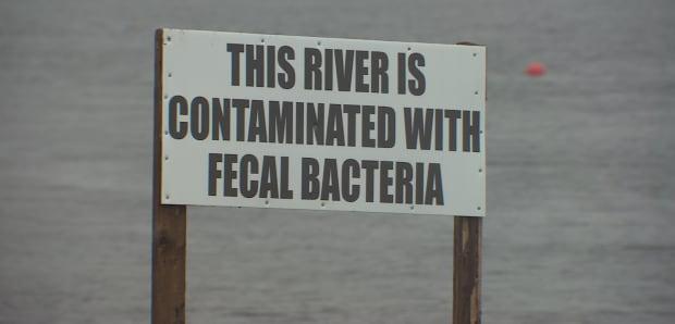 LaHave River, sewage, fecal bacteria