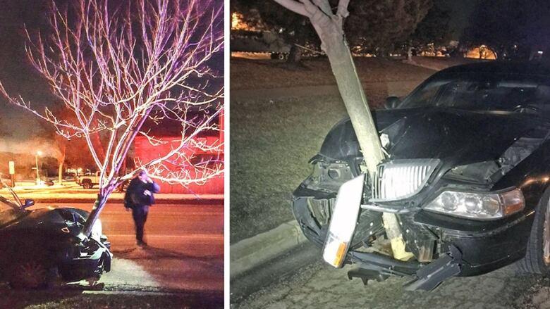 Woman drives through Illinois despite 15-foot tree stuck in car's