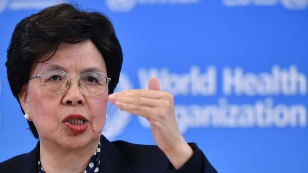Sexual transmission of the Zika virus is more common than previously assumed, World Health Organization director-general  Margaret Chan says.