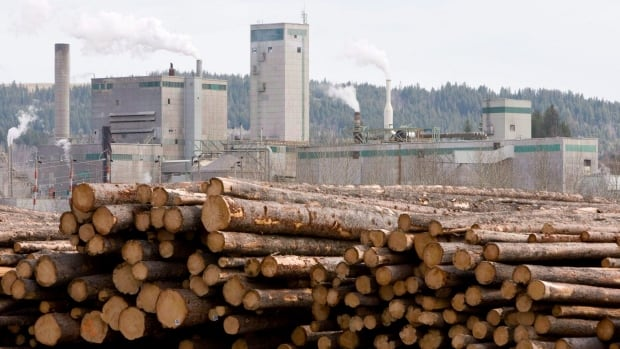 Logs are piled up at West Fraser Timber in Quesnel, B.C., in this photo taken in 2009. An explosion at a West Fraser plant in Quesnel led to a fire on Wednesday night.