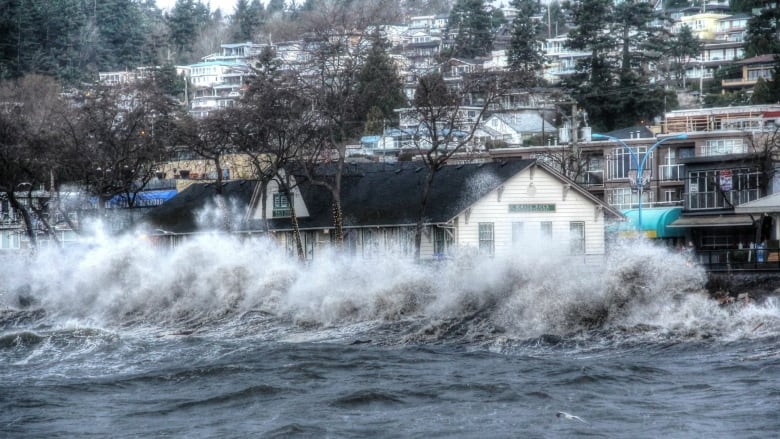 Image result for BC coast sea surge