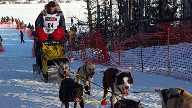 Hans Gatt near the start of the 2016 Iditarod sled dog race.