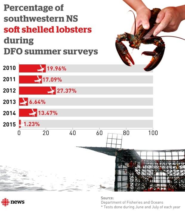 Percentage of southwestern NS soft shelled lobsters during DFO summer surveys