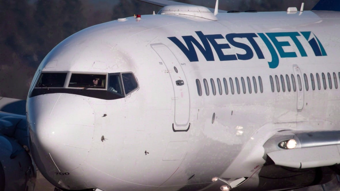 WestJet to offer weekly direct flight from St. John's to Tampa in ...