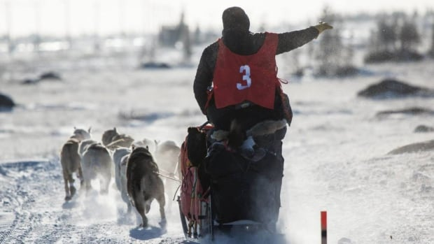 The Hudson Bay Quest takes the best mushers 35 to 40 hours to complete,