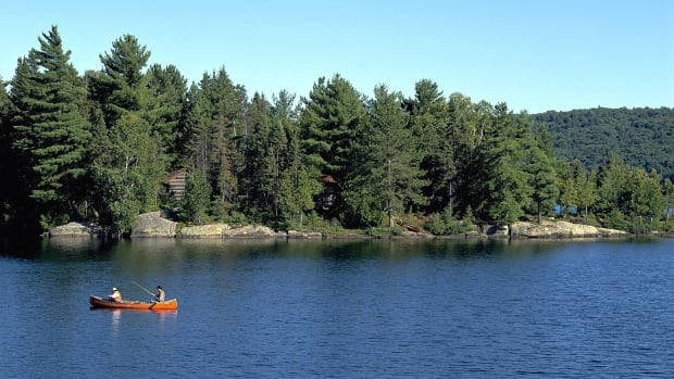 Toronto teen missing, presumed drowned on camping trip