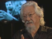 In a special episode of CBC's The Nature of Things tables turn as the program focuses on the host and marks David Suzuki's 80th birthday, March 24, 2016.