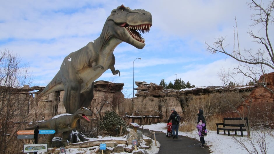 Calgary Zoo S Dinosaurs Alive Brings Enormous T Rex To Prehistoric Park Cbc News