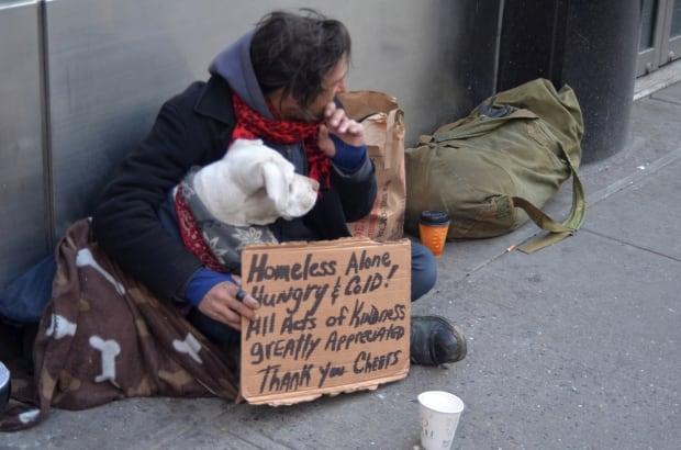 HOMELESS YOUTH PETS DEPRESSION