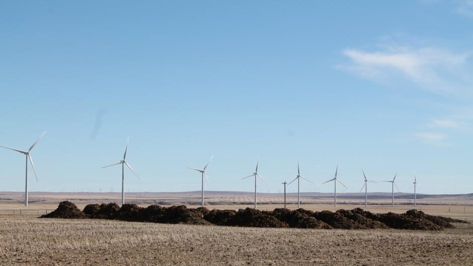 Wind turbines, part of TransAlta's Summerview operation, spin on a farmer's field in Pincher Creek, Alberta.