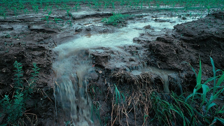 Runoff from a farm field in Iowa during a rain storm