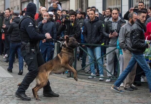 BELGIUM TERRORIST RAID POLICE DOG
