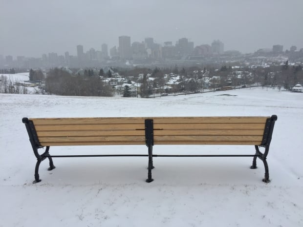 Edmonton Winter 3