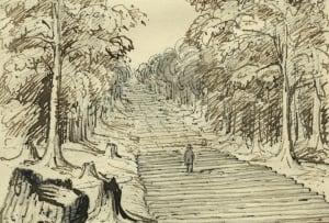 historic-corduroy-road
