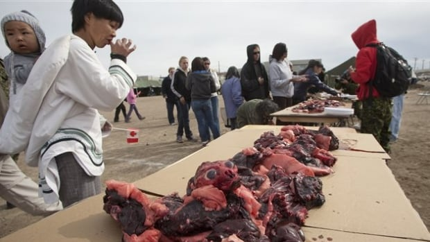 A woman eats seal meat during a community event in Iqaluit in 2009. Seal meat is a staple of the Inuit diet. Public health officials in Nunavik are still encouraging people to eat the meat even though a dozen people became sick from the trichonella parasite in seal meat this winter.