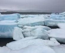 Multi-year ice