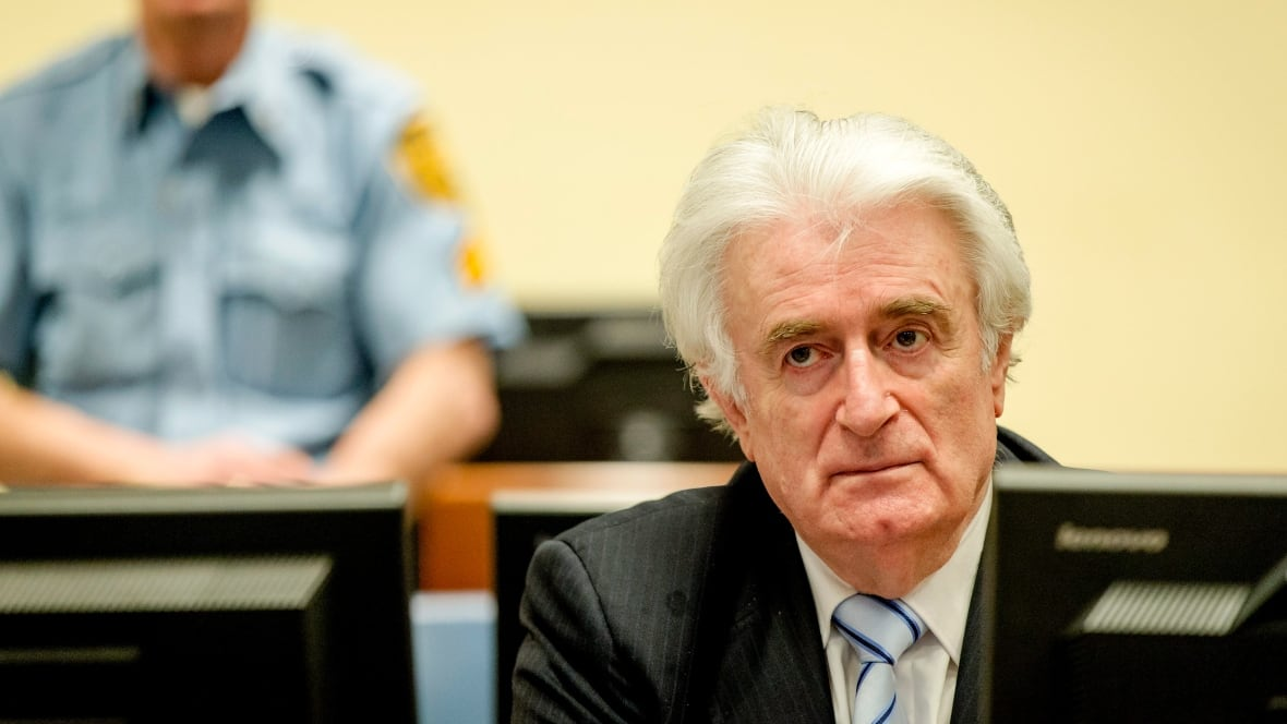 UN Appeal Judges Urged To Hand Life Sentence To Karadzic