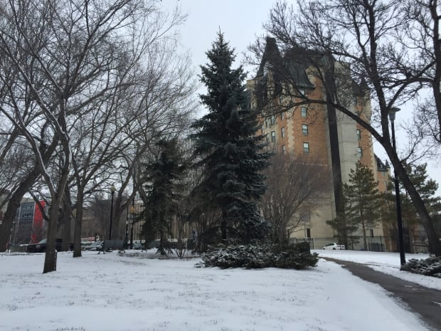 snow-delta-bessborough-saskatoon