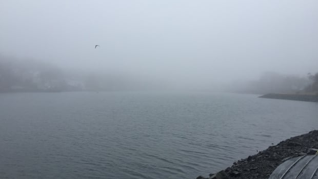 A foggy day on the Northwest Arm in Halifax.