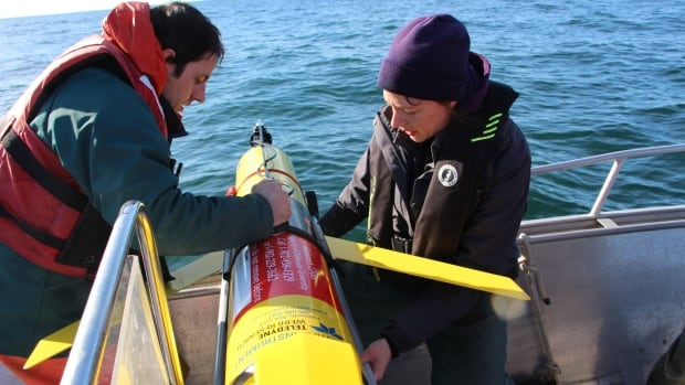 Adam Comeau of the Ocean Tracking Network in Halifax and Rianna Burnham of the University of Victoria prepare to launch the glider into the ocean.