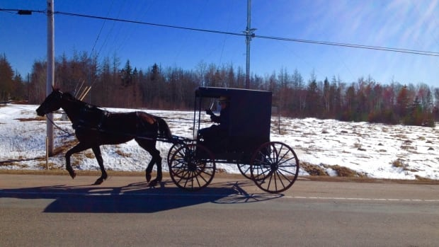 The first Amish couple has arrived, and has settled near Montague.
