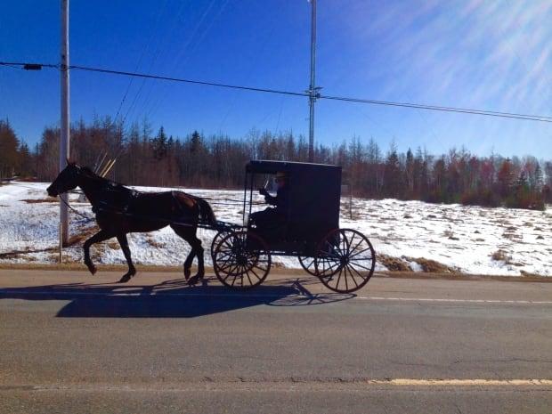 PEI-hi-Amish