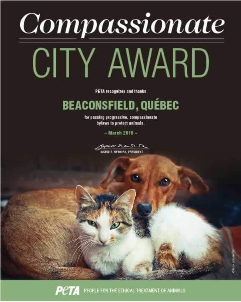 Beaconsfield recognized by PETA for commitment to animals | CBC News