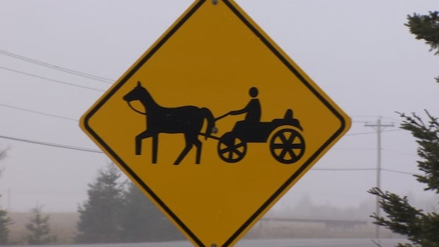 This sign warns travellers in the Montague area to watch for Amish horse-drawn buggies.