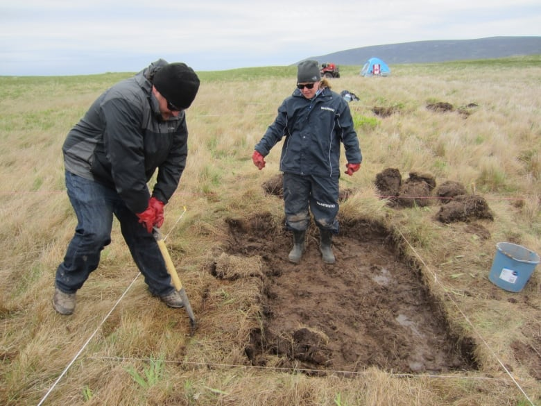 Potential Viking site found in Newfoundland | CBC News