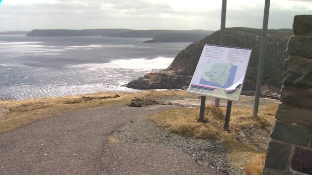 Parks Canada Not Commenting After Woman Drives Off Signal Hill - Car signal hill