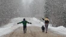 Snowfall in Manitoba