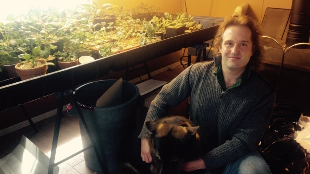 Dave Murphy has a licence to possess medical marijuana, but questions why he can't also grow cannabis on the small farm where he lives in Blanford, N.S.