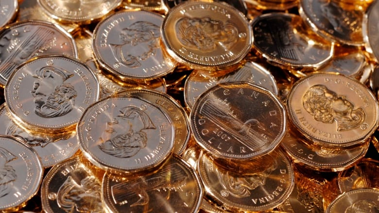 Canadian Dollar Touches 80 Cents Us