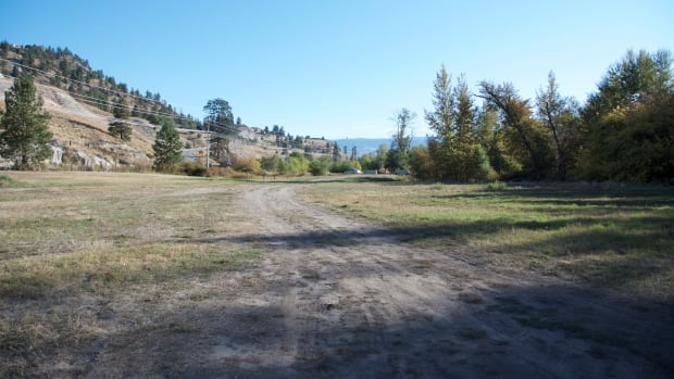 """A field at Brent's Grist Mill in Kelowna. The City of Kelowna and UBC-Okanagan hope to turn this low-productivity land into a """"pasture for bees."""""""