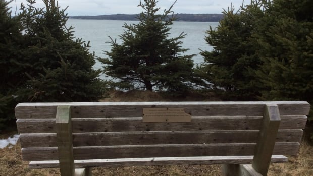 The Do Crew will be helping to install benches on beautiful McNabs Island in Halifax Harbour.