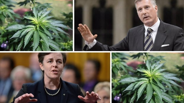 Conservative leadership candidates Dr. Kellie Leitch and Maxime Bernier appear set for a clash over the legalization of marijuana, with Leitch against it and Bernier in favour.