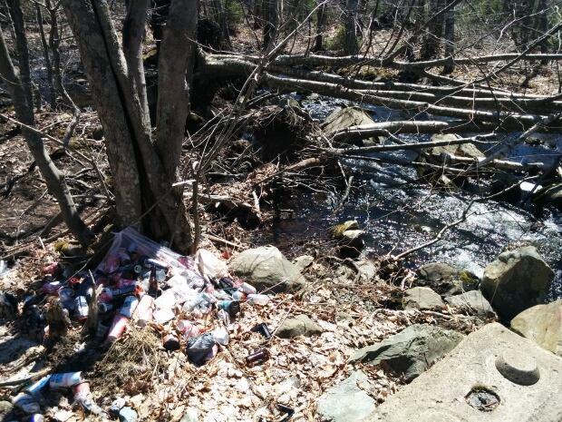 Grassy Brook garbage