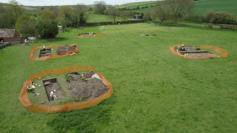 How this man found a huge Roman villa buried in his backyard